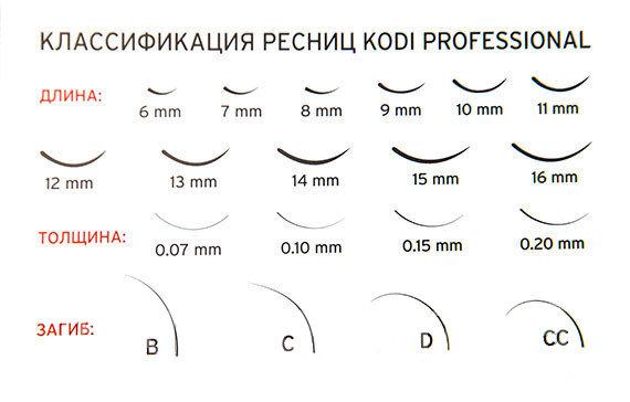 фото - Классификация ресниц Kodi